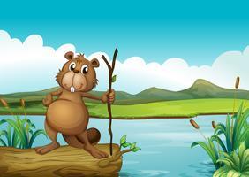 Un castor à la rivière vecteur