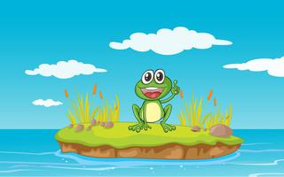 une grenouille et de l'eau