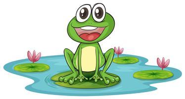 grenouille et eau