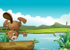 Un castor au bord d'une rivière vecteur