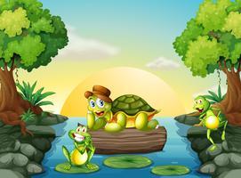 Une tortue et les deux grenouilles à la rivière