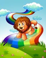 Un lion au sommet d'une colline avec un arc en ciel