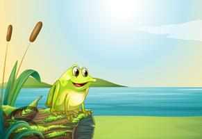 Une grenouille au-dessus d'un tronc au bord de la rivière vecteur