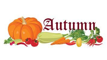 Étiquette de légumes. La nourriture saine. Bannière de récolte d'automne.