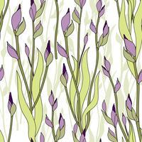 Motif floral Fond transparent de fleurs. Jardin d'ornement vecteur