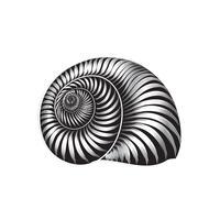 Seashell gravé signe isolé. Coquillage. Ornement de la vie marine