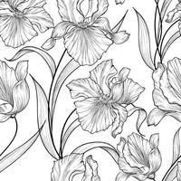 Floral pattern sans soudure. Fond de gravure de fleur iris.