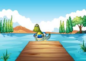 Un crocodile à l'intérieur d'une bouée nageant vecteur