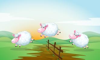 Compter les moutons