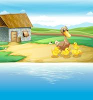 Une famille de canard près de la rivière vecteur