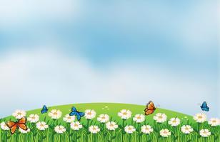 Papillons dans le jardin