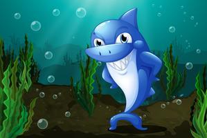 Un requin bleu sous la mer