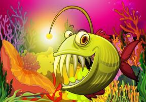 Un gros poisson sous la mer