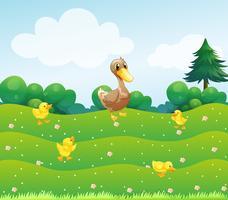 Une mère canard et ses canetons dans les buissons vecteur