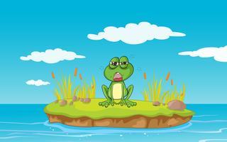 une grenouille et une eau vecteur