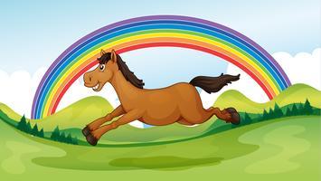 Un cheval souriant et sautant