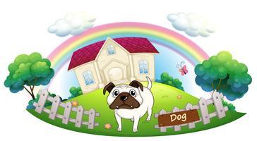 Un bulldog blanc à l'intérieur de la clôture avec une maison à l'arrière