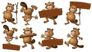 Un groupe de castors avec des planches de bois vides vecteur