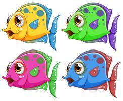 Quatre poissons colorés