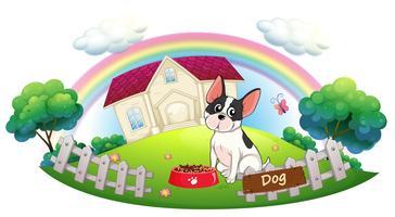 Un chien et sa nourriture pour chien devant une maison