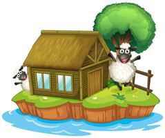 Une île avec une maison indigène et deux moutons