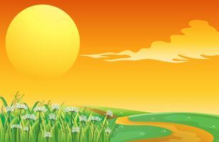 Un coucher de soleil au sommet de la colline avec un sentier
