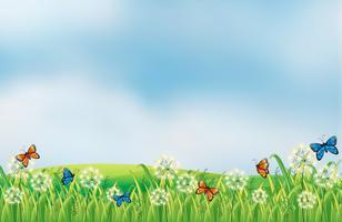 Papillons colorés dans le jardin