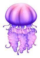 Une méduse lavande vecteur