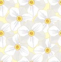 Floral pattern sans soudure. Fond de fleurs.