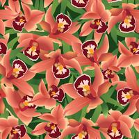 Floral fond sans couture. Toile de fond fleur ohrid vecteur