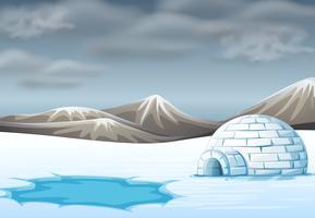 igloo sur un terrain froid vecteur