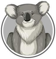 Koala en cercle vecteur