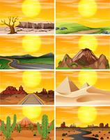 Scène de coucher de soleil