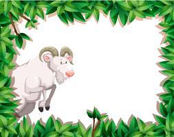 Cadre nature avec chèvre