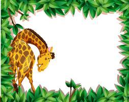 Une girafe en bordure de nature