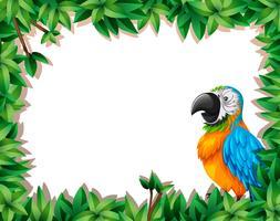 Un perroquet sur cadre nature