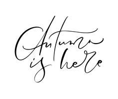 L'automne est ici le texte de calligraphie de lettrage isolé sur fond blanc. Illustration vectorielle dessinés à la main. Éléments de conception d'affiches noir et blanc vecteur