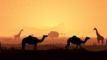 Silhouette girafe et chameau vecteur
