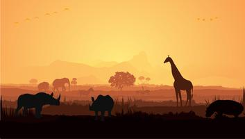 Silhouette de girafe et rhinocéros