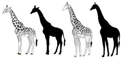 Silhouette girafe vecteur