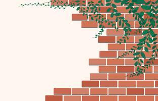 Plante de marguerite mexicaine sur le mur de briques et vecteur espace art de fond