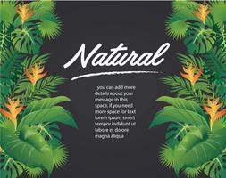 feuilles vertes design moderne et illustration vectorielle fond noir