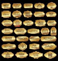 Collection de badges et étiquettes rétro vierges vintage vecteur