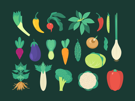 Ensemble de légumes colorés vecteur