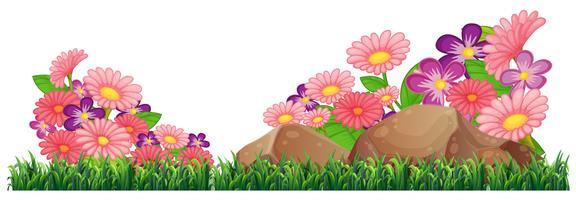 Modèle de belle fleur isolé vecteur