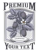 Étiquette vintage de vecteur aux fraises