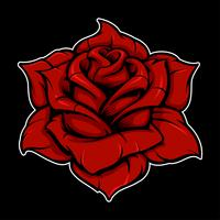 Rose (version couleur) vecteur