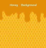 Goutte à goutte de miel sur fond de nid d'abeilles vecteur