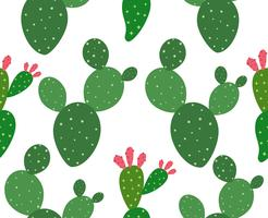 Cactus sans soudure de fond - illustration vectorielle