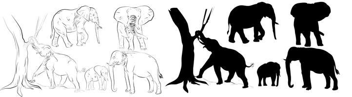 Silhouette d'éléphant vecteur